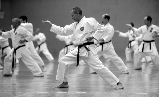 Diferencias entre un Maestro, Profesor y Entrenador de Karate