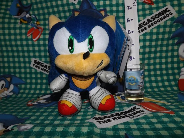 Sonic Boom Chibi Head Plush Hidden Palace Games