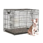 Dog Training Crate Available In Different Sizes Petland Canada