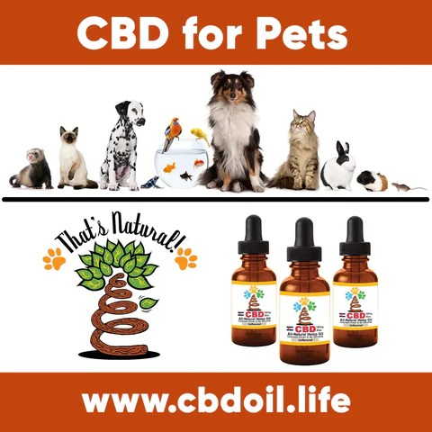 Pet CBD testimonials - CBD for pets, CBD for dogs, CBD for cats, CBD for birds, CBD oil for animals, That's Natural, Can CBD help animals, hemp-derived CBD, legal That's Natural Topical Products, full spectrum CBD Oil, entourage effects, cbdoil.life, www.cbdoil.life, legal in all 50 states, thatsnatural.info, www.thatsnatural.info