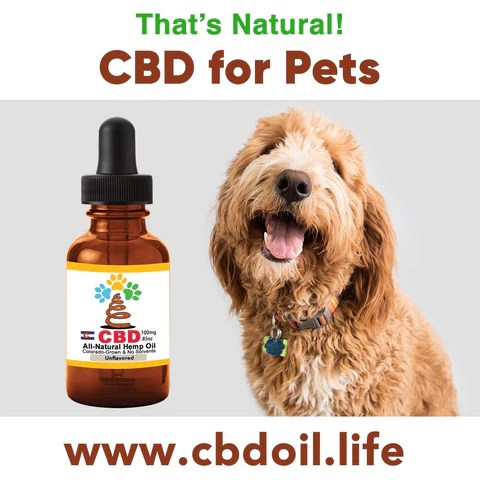 CBD for pets, CBD for dogs, CBD for cats, CBD for birds, hemp-derived CBD, Thats Natural topical CBD products, create Life Force with biodynamic Colorado hemp - That's Natural CBD Oil from hemp - whole plant full spectrum cannabinoids and terpenes legal in all 50 States, CBD oil drops for dogs - www.cbdoil.life, cbdoil.life, www.thatsnatural.info, thatsnatural.info