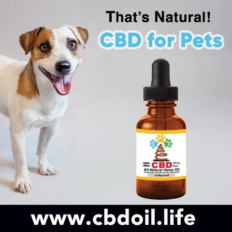 Thats Natural Testimonials - CBD for pets, CBD for dogs, CBD for cats, CBD for birds, hemp-derived CBD, Thats Natural topical CBD products, create Life Force with biodynamic Colorado hemp - That's Natural CBD Oil from hemp - whole plant full spectrum cannabinoids and terpenes legal in all 50 States, CBD oil drops for dogs - www.cbdoil.life, cbdoil.life, www.thatsnatural.info, thatsnatural.info