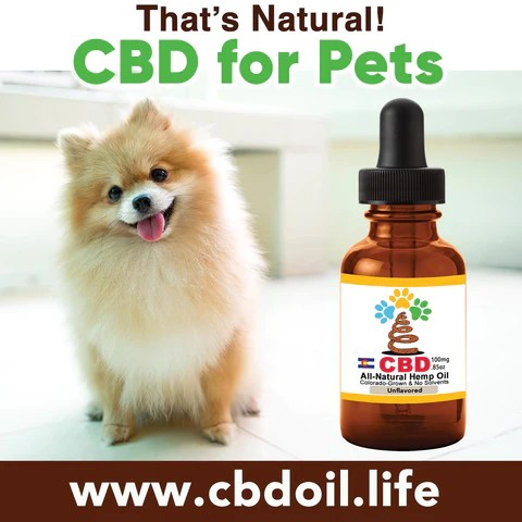 Best-Rated CBD for pets - hemp-derived CBD, legal in all 50 States, That's Natural CBD for internal use - legal hemp CBD Entourage Effect - CBD Oil Drops (250mg CBD per 1 oz. Bottle) - Our most simple product containing our proprietary CBD-rich hemp oil, organic grape seed oil, and organic hemp seed oil. This is the product that can also be taken internally, or applied topically! Find online at www.cbdoill.life, www.cbdoil.life, thatsnatural.info, www.thatsnatural.info and at Thats Natural Life Force Market!  CBD from hemp from Thats Natural, CBD for Pets