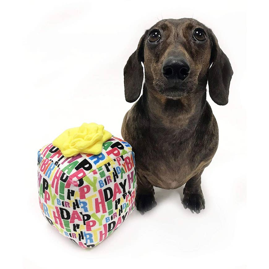 Singing Happy Birthday Gift For Dogs Plush Toy The Hipster Hound