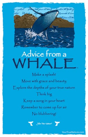 Advice From A Whale Frameable Art Postcard Your True