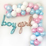 Gender Reveal Balloon Garland Kit Pretty Collected