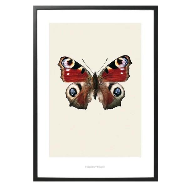 Hagedornhagen Butterfly Art Print Huset Your House For