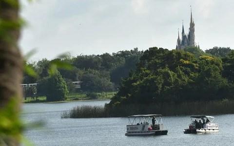 Toddler Attacked By Alligator At Walt Disney World