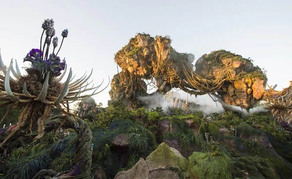Pandora World of Avatar Opening Secrets at Disney's Animal Kingdom