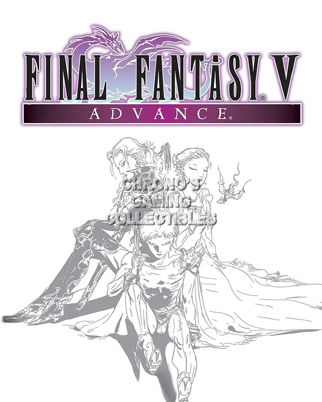 cgc huge poster final fantasy v art ps1 ps2 psp nintendo snes ds gba ffv003