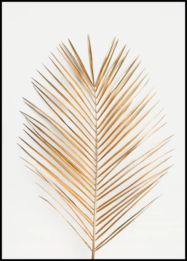 palm leaf gold poster board