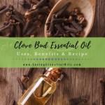 Clove Essential Oil Uses Benefits Recipes Eo Spotlight