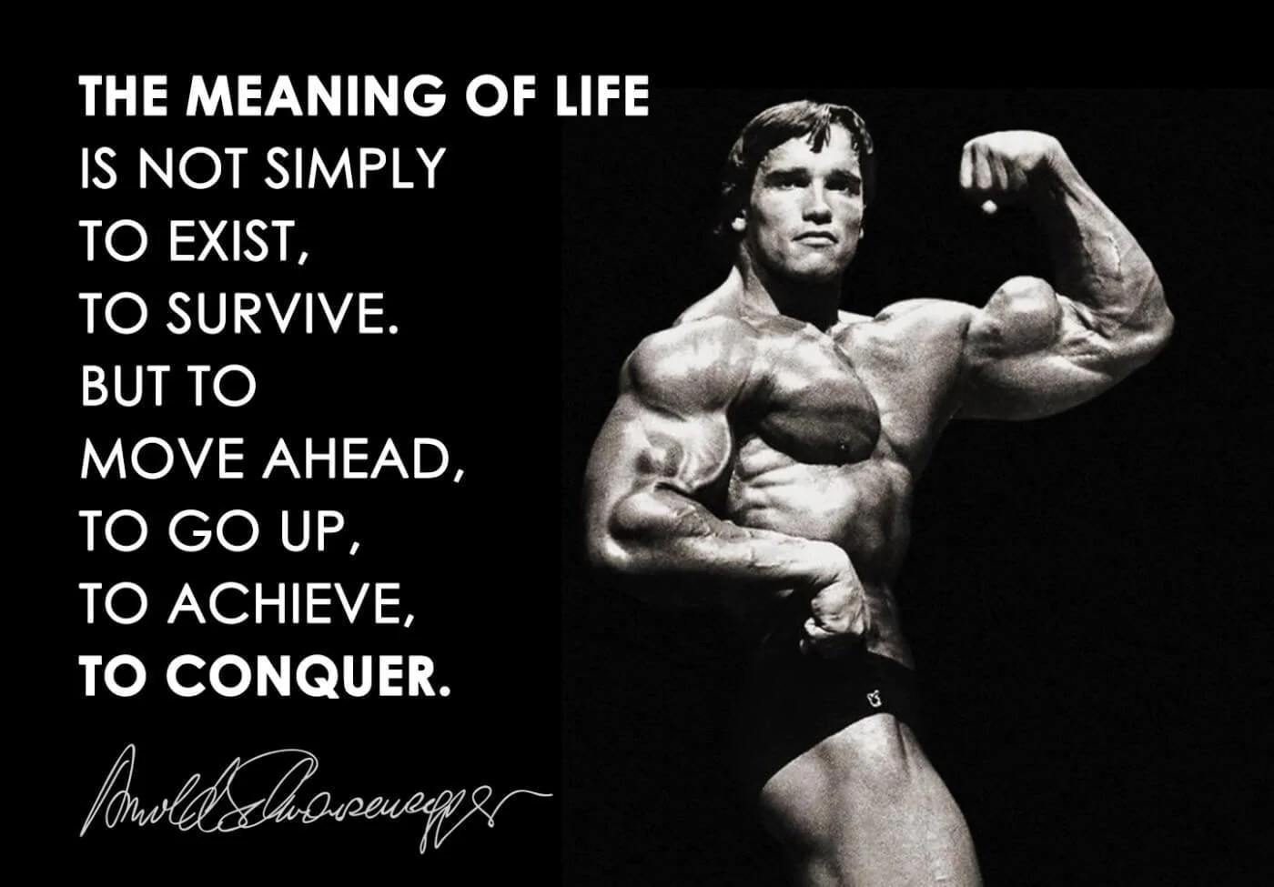 the meaning of life is to conquer arnold schwarzenegger posters