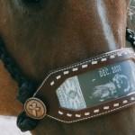 Tack Sets Desert Rose Equine