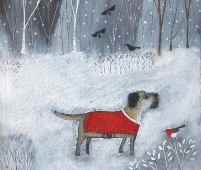 Christmas Card Pack By Louise Rawlings Dog In Red Coat With Robin In The Snow