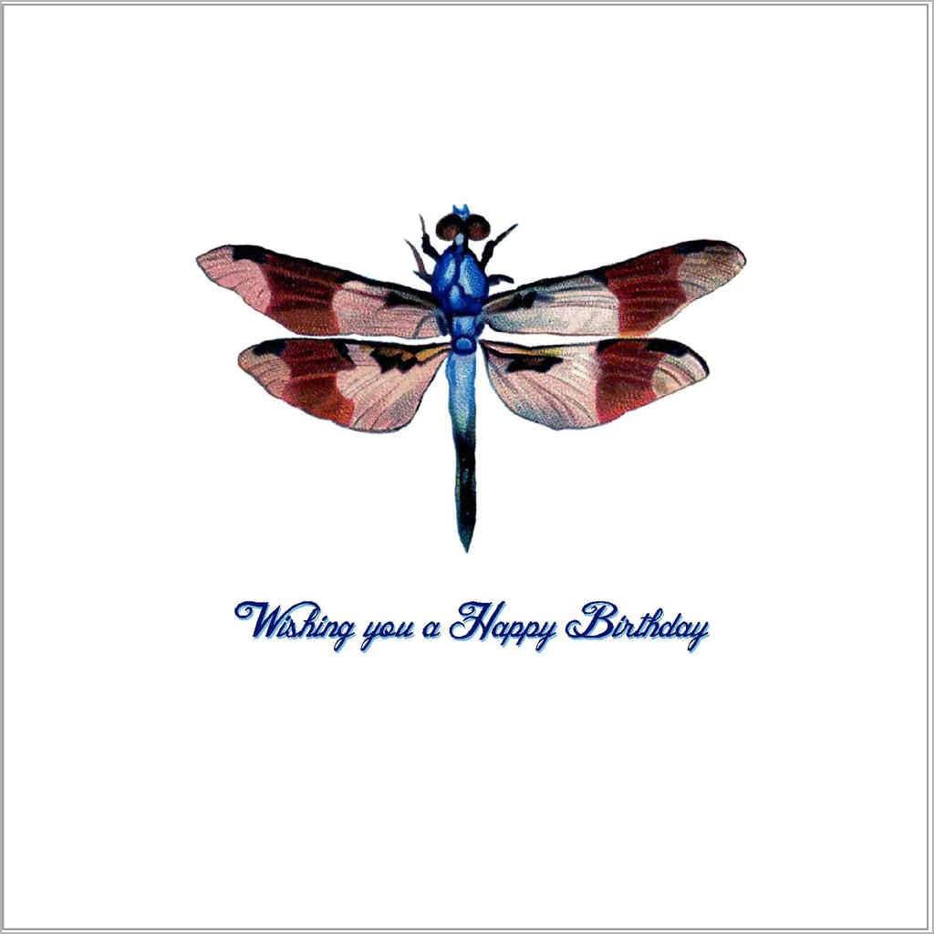 Happy Birthday Vintage Dragonfly Sandra Muir Design