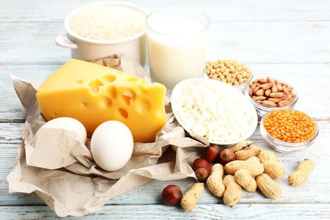 High Protein Diet for Fat Loss