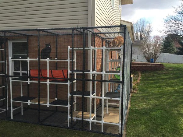 outdoor pvc catio for cat play