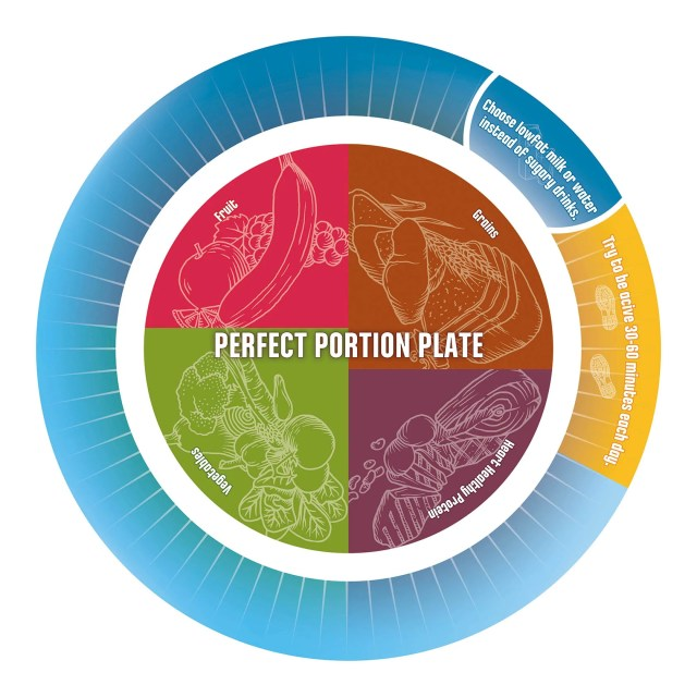 Portion Control Plate for Diet and Exercise Success 10 Pack - Nutrition Education Store