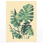 Monstera Deliciosa Plant Print By Chris Turnham Material Materialshop