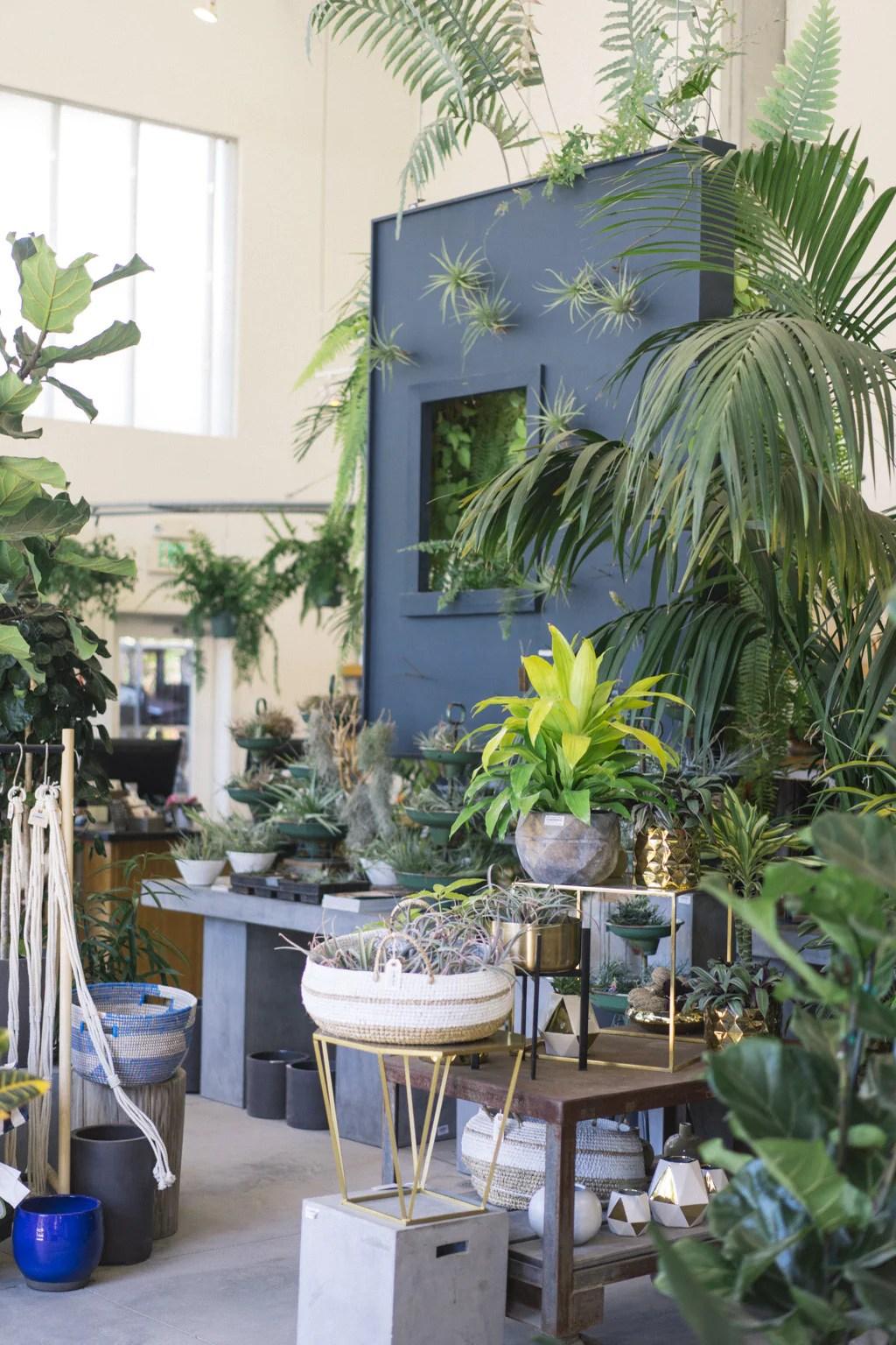 Flora Grubb Garden Shop