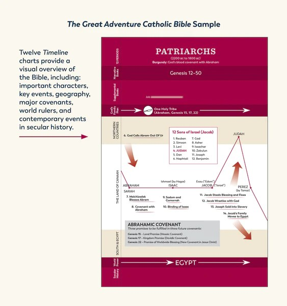An example of one of the twelve timeline charts from the Great Adventure Catholic Bible from Jeff Cavins and Ascension. This timeline chart features the time period called the Patriarchs, and it's printed in red.