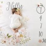 Milestone Baby Blankets Pipsy