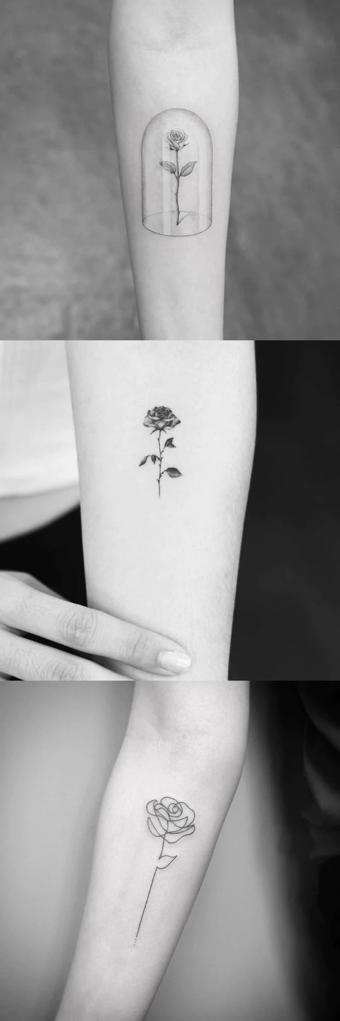 85b4dee5060d3 High Black Rose Tattoos On Arm Rose Tattoo Drawings Women Rose ...