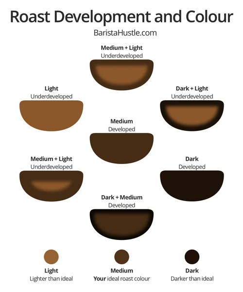Coffee Bean Color Chart