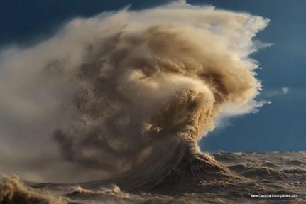 The The Sandman by Dave Stanford Deniz ve Deniz Yaşamı Fotoğrafları