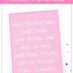 101 Of The Best Bachelorette Party Phrases Sayings And Quotes Stag Hen