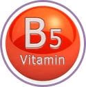Vitamins-B5 for Wow Skin Science Shea & Cocoa Butter Body Lotion