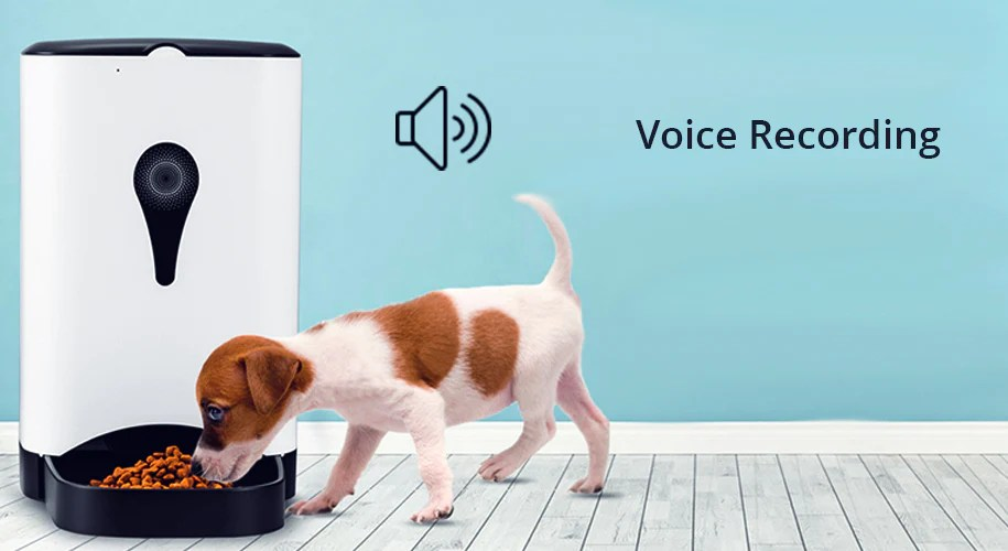 Puppy eating from Smartpaw basic pet feeder
