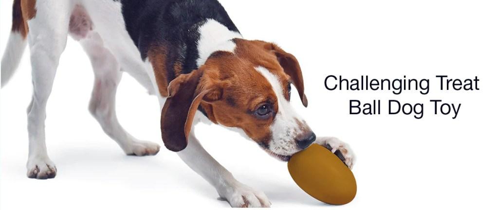 PETKIT - Dog Treats Toy