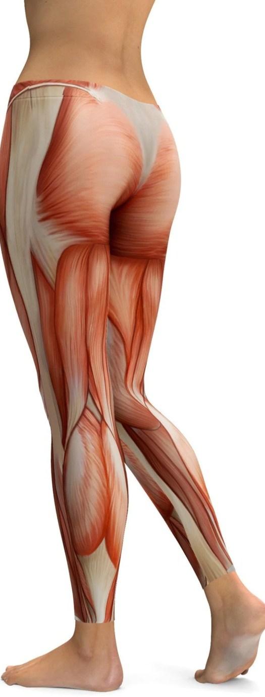 Human Anatomy Leggings Periodic Diagrams Science