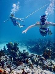 Snuba Turks & Caicos