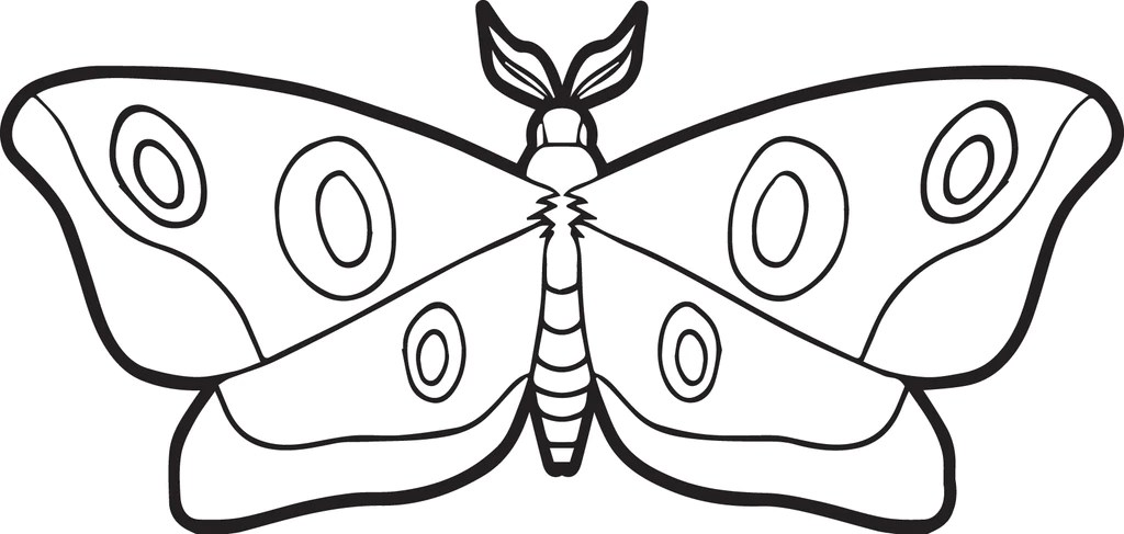 Free Printable Moth Coloring Page For Kids SupplyMe