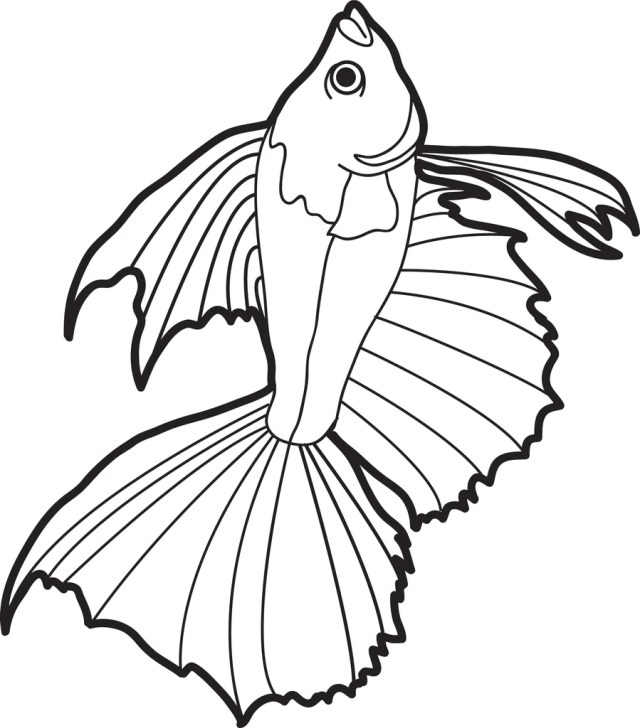 Realistic Fish Coloring Page #17