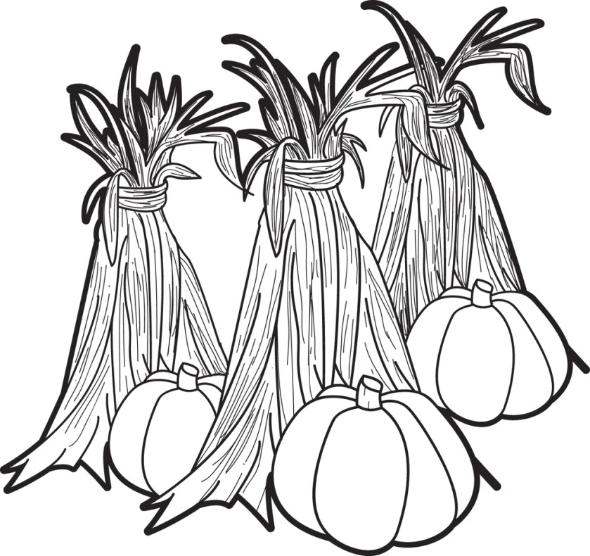 printable pumpkins and corn stalks coloring page for kids