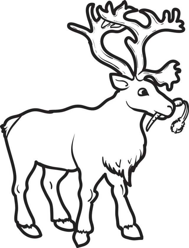 Printable Reindeer Coloring Page for Kids