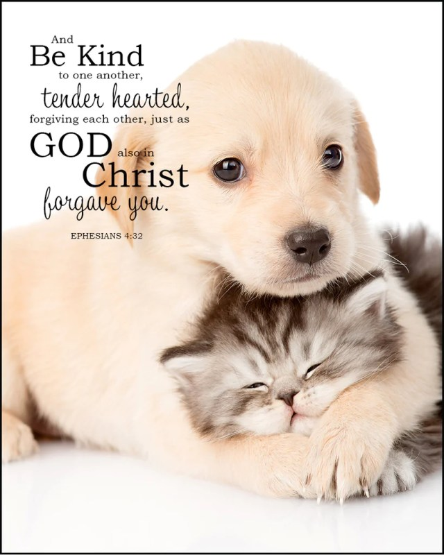 Ephesians 4:32 Inspirational Bible Verse Art