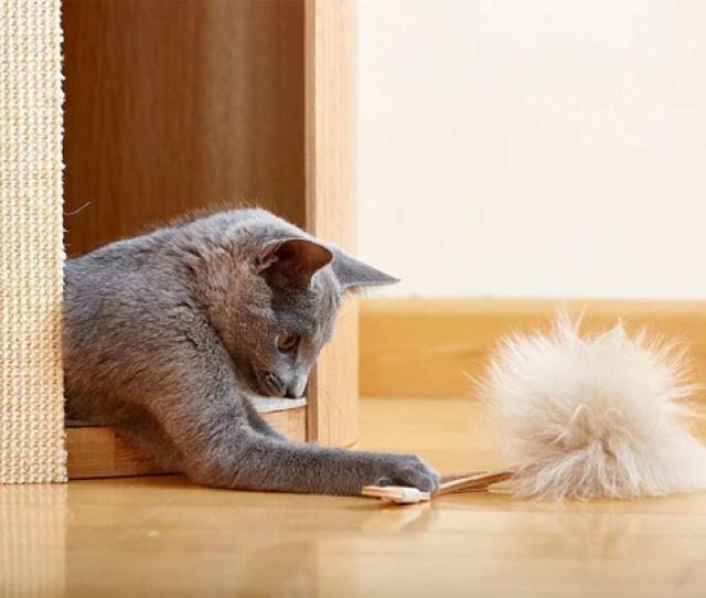 Topo Cat Toy Tuft Paw