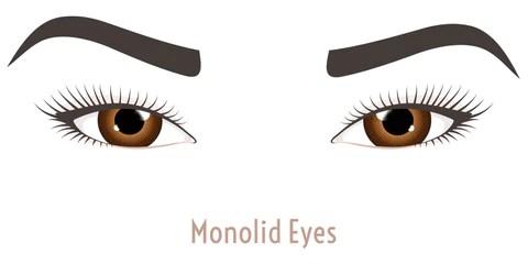 Monolid Eyeshape - Mademoiselle Lash - what eye shape do I have