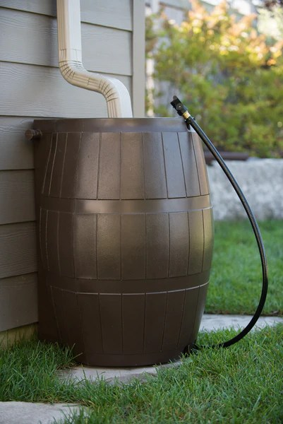 Image result for rain barrel