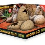 Buy Exo Terra Dinosaur Eggs Hide Large At The Bio Dude For Only 16 95