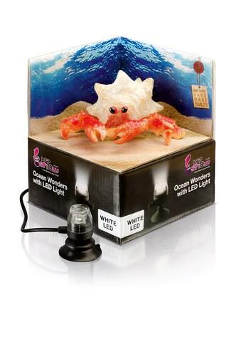 h2show ocean wonders hermit crab white led light