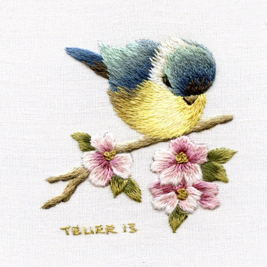 Level All - Blue Tit & Apple Blossoms