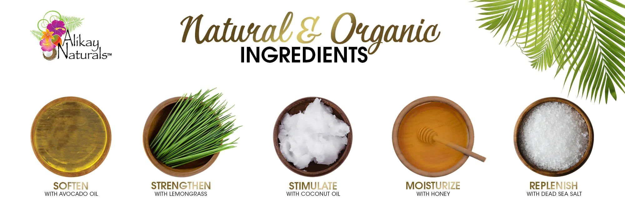 Agave Hair Nectar Oil Growth Coconut And