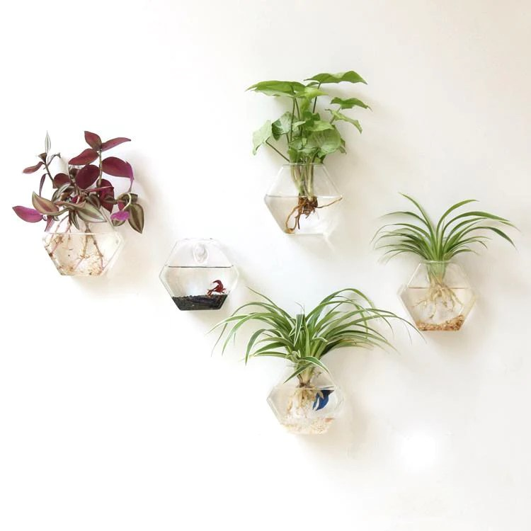 Glass Wall Vase Indoor Wall Mounted Planters Hanging Terrariums Tableclothsfactory