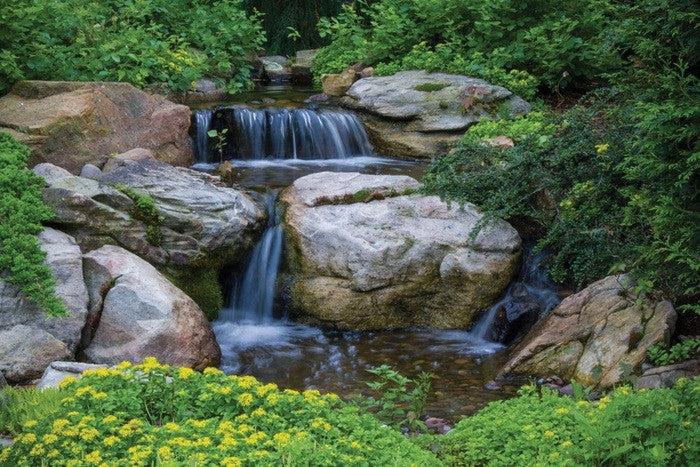Farm Pond Herbicides